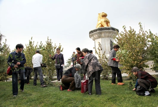 Double Ninth Festival is also a festival for old people. Old people in Xian are inserting Zhuyu in the earth.