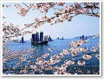 Shanghai Wuxi One Day Private Tour